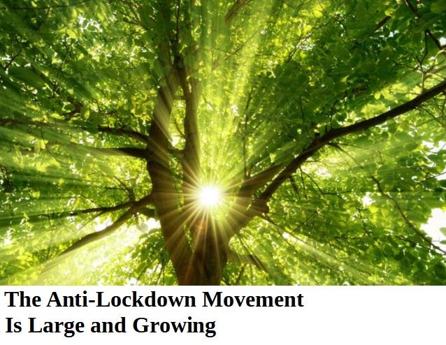 antilockdown2.jpg
